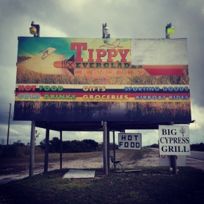 tippy in the everlades